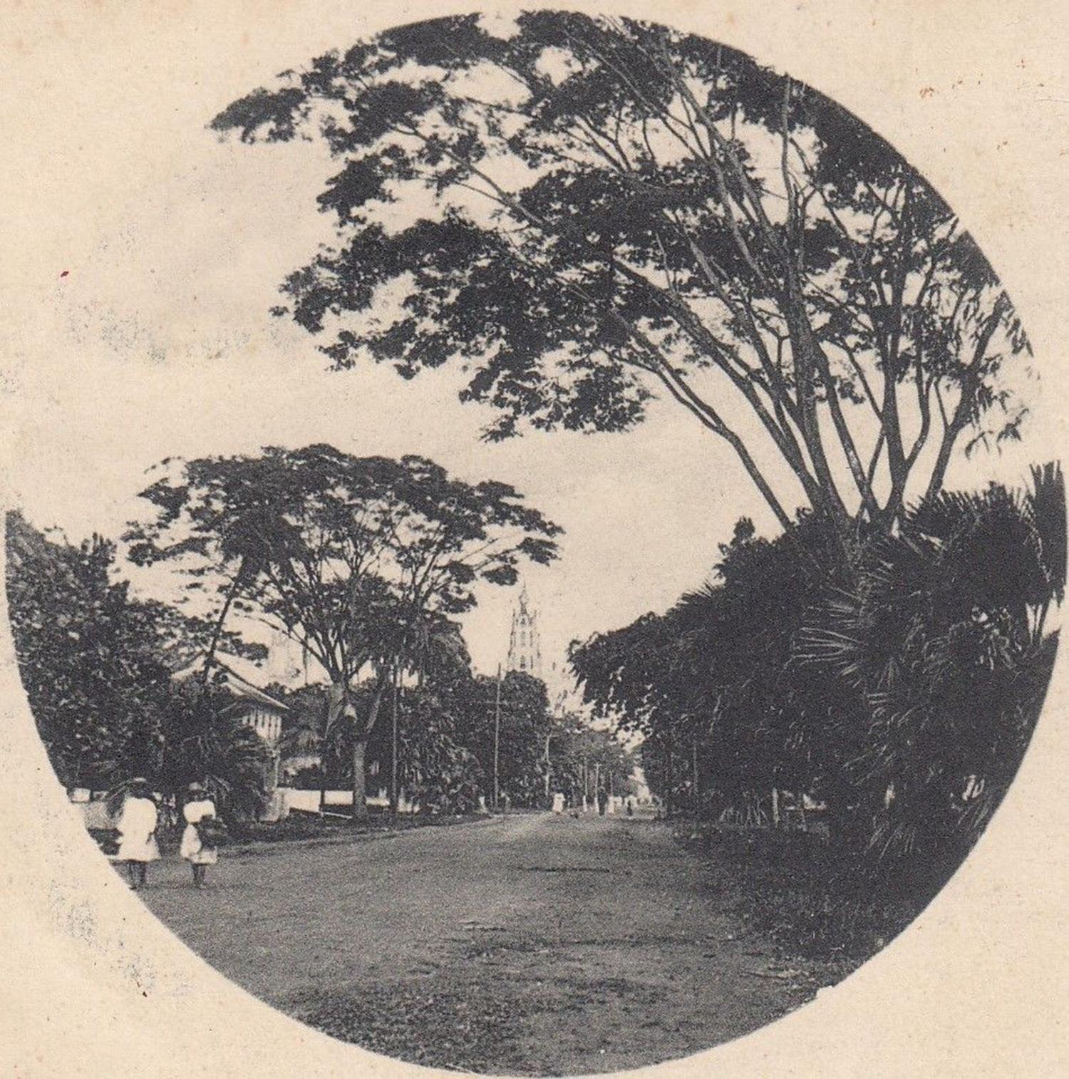 Brickdam 1905
