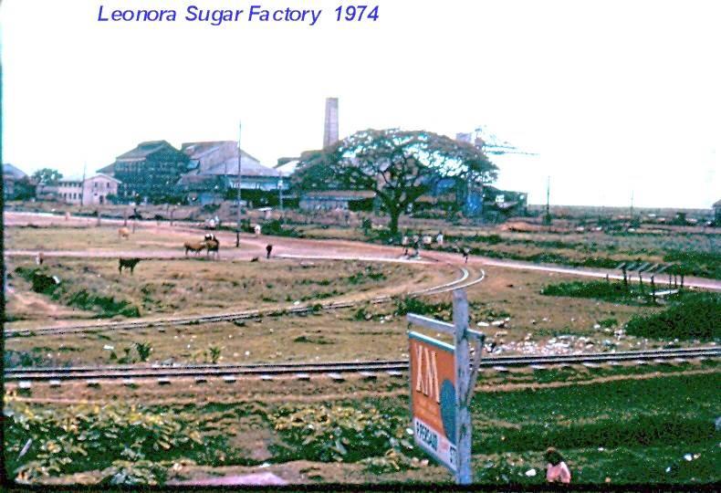 Leonora Sugar Factory 1974